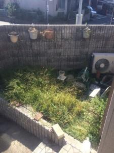 庭のリニューアル前