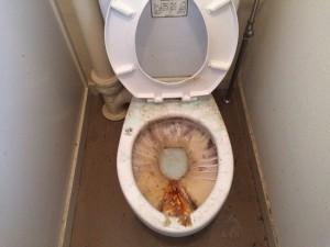 トイレの掃除前
