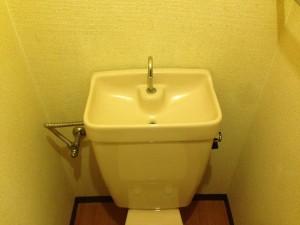 トイレの掃除後(ゴキブリのフン除去)1