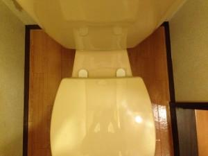 トイレの掃除後(ゴキブリのフン除去)2