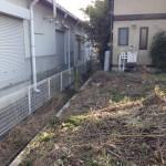 庭の掃除後