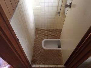 和式トイレの掃除後2