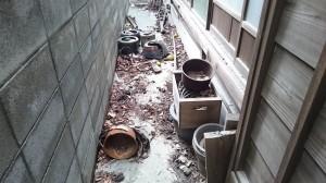 家の周りの大掃除前2