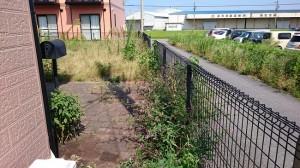 アパートの除草作業前3